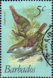 Barbados 1979 Birds SG 624 Fine Used