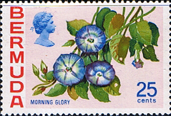 Bermuda 1970 Flowers SG 260a Morning Glory Fine Mint