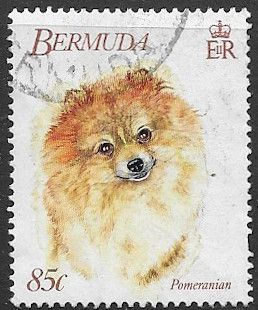 Bermuda Stamps 1992 World Congress of Kennel Clubs Set Fine Mint
