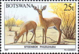 Botswana 1987 Animals SG 630 Fine Mint