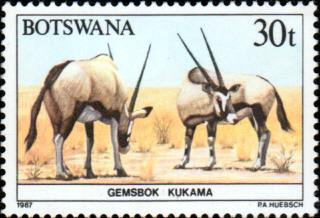 Botswana 1987 Animals SG 631 Fine Mint