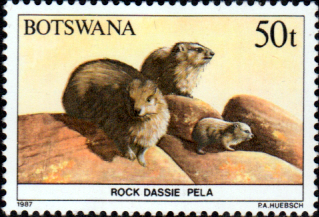 Botswana 1987 Animals SG 634 Fine Mint