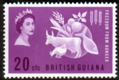 Stamps British Guiana 1963 Freedom From Hunger Fine Mint  SG 349 Scott 271