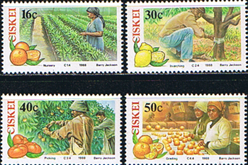 Ciskei 1988 Citrus Farming Set Fine Mint