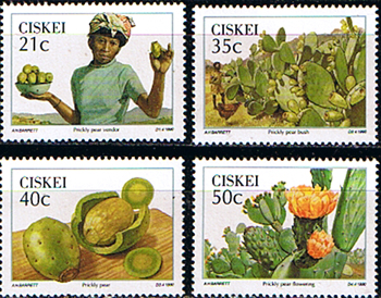 Ciskei 1990 Prickly Pear Set Fine Mint