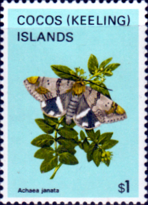 Cocos Keeling Islands 1982 Butterflies and Moths SG 97 Fine Mint