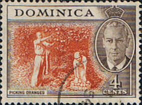 Stamps Stamp Dominica 1951 King George VI SG 124 Fine Used Scott 126