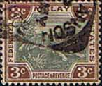 Federated Malay States 1900 SG 16a Tiger Fine Used