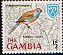 Gambia 1966 Birds SG 233 Fine Mint