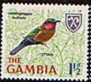 Gambia 1966 Birds SG 235 Fine Mint