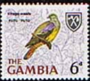 Gambia 1966 Birds SG 239 Fine Mint