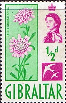 British Europe Stamps Stamp Gibraltar 1960 SG 160 Flower Candytuff Fine Mint SG 160 Scott 147