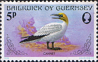 Stamps Stamp Guernsey 1978 Birds SG 169 Gannet Fine Mint Scott