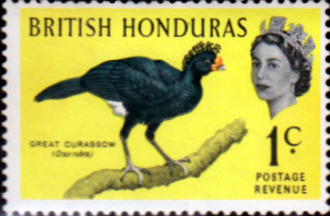 British Honduras 1962 Birds SG 202 Fine Mint