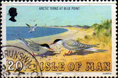 Postage Stamps Isle of man 1983 Birds SG 241 Fine Used