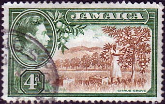Jamaica 1938 SG 127 Citrus Grove Fine Used