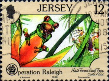 Jersey 1988 Operation Raleigh SG 452 Fine Used