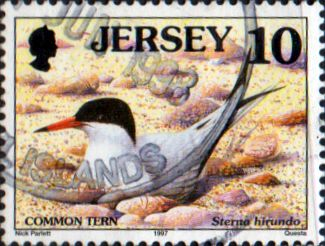 Jersey 1997 Birds SG 778 Fine Used