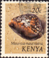 Postage Stamps Kenya 1971 Shells Purplish clanculus SG 39 Fine Used Scott