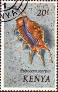 Postage Stamps Kenya 1971 Shells Scorpion conch SG 52 Fine Used Scott 50