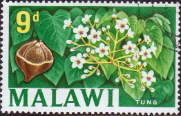 Malawi 1964 SG 221 Tung Tree Fine Used