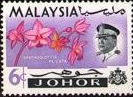 Malay State of Johore 1965 Flowers SG 169 Fine Mint