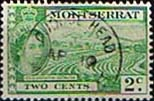 Montserrat 1953 Queen Elizabeth II SG 138 Sea Island Cotton Cultivation Fine Used