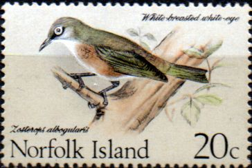 Norfolk Island 1970 Birds Mint SG 110 Scott 133 Bird Stamp