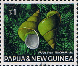 Stamp Stamps Papua New Guinea 1968 Sea Shells SG 150 Fine Used Scott 278