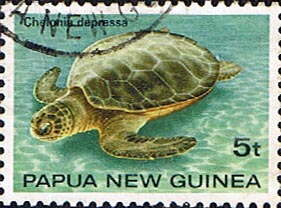 Postage Stamp Papua New Guinea 1984 Turtles SG 472 Fine Used Scott 592
