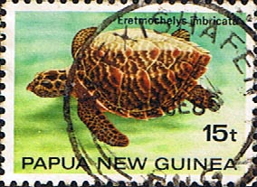 Postage Stamps Papua New Guinea 1984 Turtles SG 474 Fine Used Scott 593
