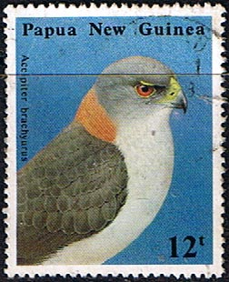 Postage Stamp Papua New Guinea 1985 Defence Force SG 500 Fine Used Scott 620