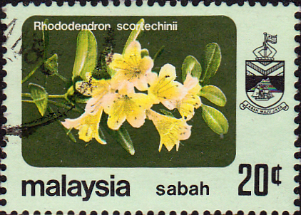 Sabah 1983 SG 457a Flower Rhododendron Scortechinii Fine Used