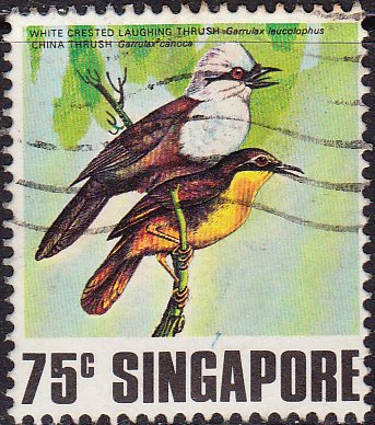 Singapore 1978 Singing Birds SG 325 Fine Used
