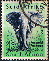 South Africa 1954 Wild Animals SG 156 Elephant Fine Used