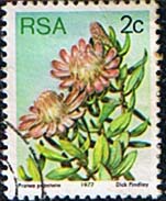 South Africa 1977 Proteas and Succulents SG 415 Fine Used