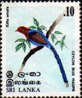 Stamp Stamps Sri Lanka 1979 Dudley Senanayake SG 672 Fine Used Scott 552