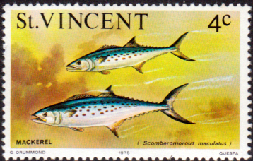 St Vincent 1975 Marine life SG 425 Spanish mackerel Fish Fine Mint