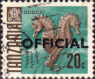 Tanzania 1967 Fish SG O23 Official Fine Used
